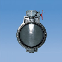 PDCPD-Butterfly-Valve