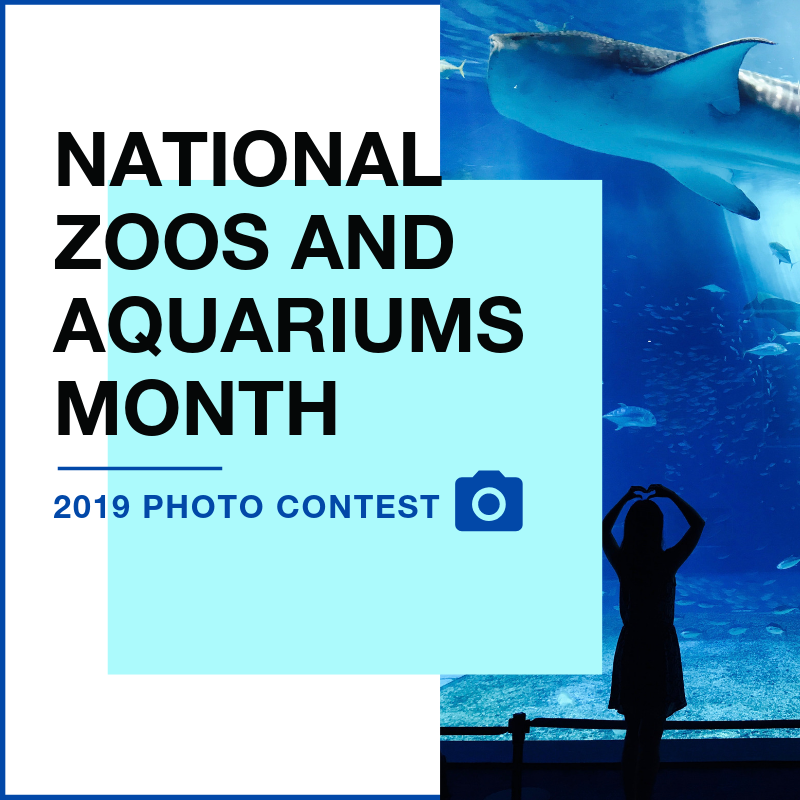 National zoos and aquariums month website